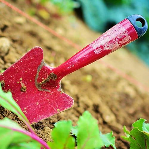 Bij het tuinieren